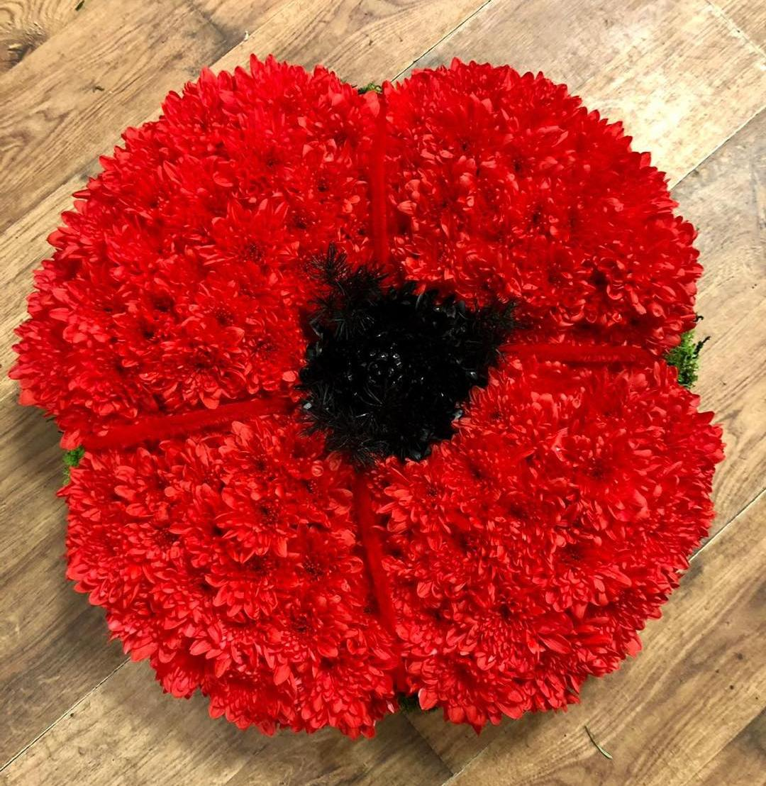 Red Poppy Tribute