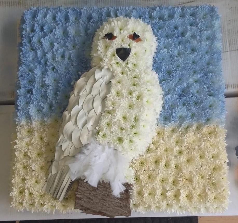 Snowy Owl POA